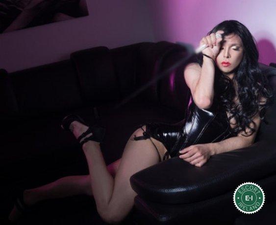 TV Jenn LoVe is a very popular Cuban escort in Galway City, Galway