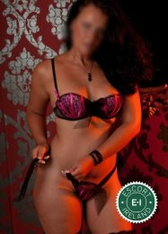 The massage providers in Dublin 4 are superb, and Monica Madrid is near the top of that list. Be a devil and meet them today.