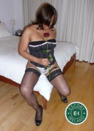 The massage providers in Galway City are superb, and Paula Massage is near the top of that list. Be a devil and meet them today.