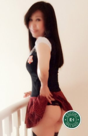 Angela is a super sexy Chinese escort in Dublin 6, Dublin