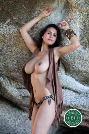 Book a meeting with Amazona in Dublin 4 today