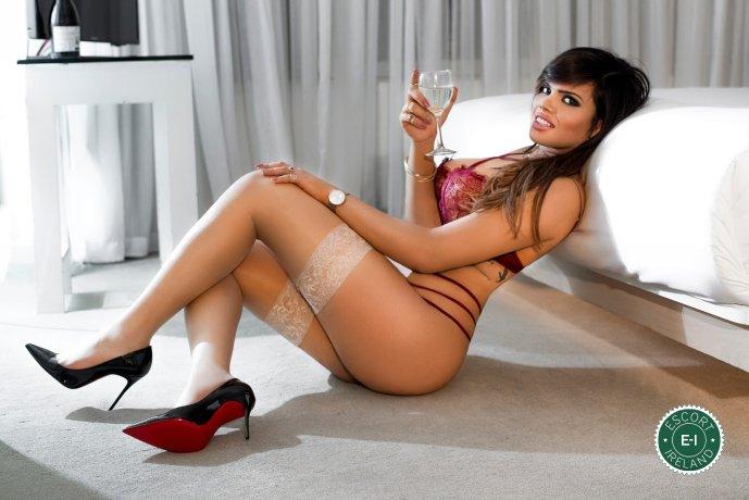 TS Camilla Gomez  is a super sexy Brazilian escort in Belfast City Centre, Belfast