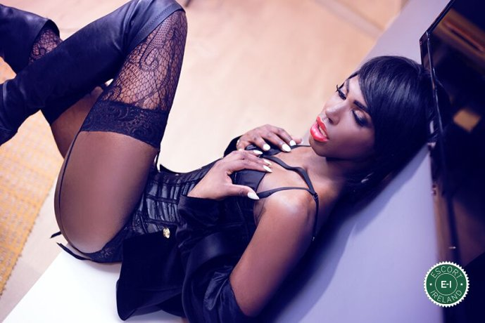 Black Panther Michelley TV is a hot and horny Puerto Rican Escort from Dublin 2