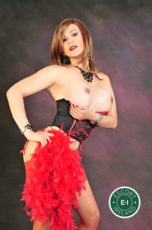 Vanessa TS is a very popular Colombian escort in Dublin 6 West, Dublin