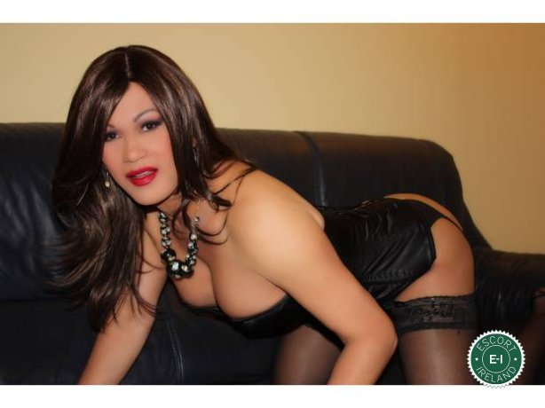 Vanessa TS is a super sexy Colombian escort in Dublin 6 West, Dublin