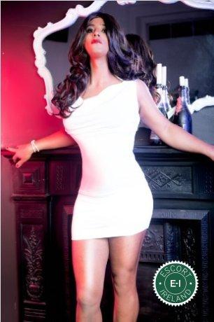 TV Sabryna XL is a super sexy Brazilian escort in Newbridge, Kildare
