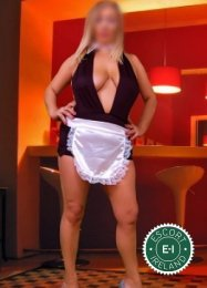 Meet the beautiful English Miss Jesse in Shannon  with just one phone call