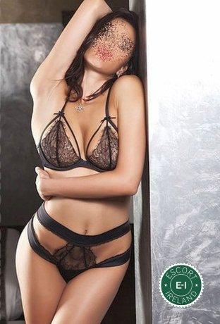 Anna01 is a high class Hungarian escort Belfast City Centre, Belfast