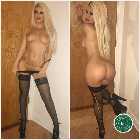 Book a meeting with Angelis in Dublin 1 today