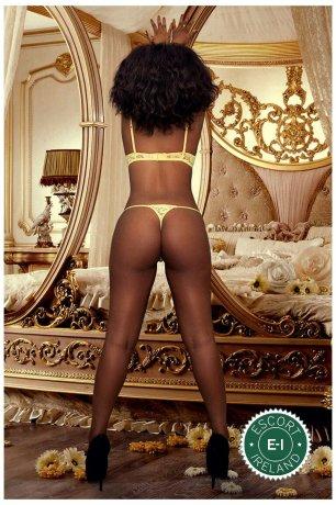 Lilly is a high class Angolan escort Dublin 3, Dublin