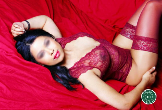 Meet Sophie in Dublin 24 right now!