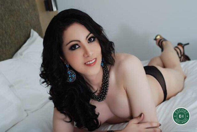Book a meeting with Iris in Dublin 1 today