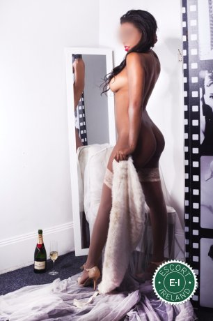 Isabela Carvalho is a sexy South American escort in Dublin 2, Dublin