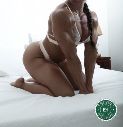 Rene is a very popular South American Escort in Cork City