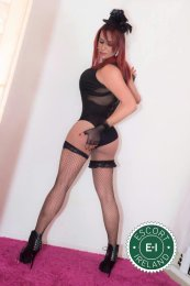 Meet the beautiful TS Pamela in Dublin 9  with just one phone call