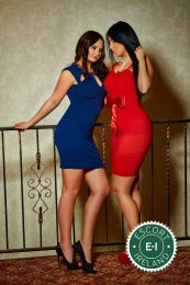 Book a meeting with Alessia and Giorgia in Dublin 9 today