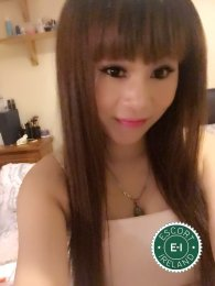Book a meeting with Lily Baby in Dublin 1 today