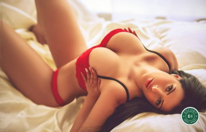 Book a meeting with Katya in Derry City today