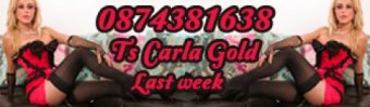 Carla Gold TS - Transexual in Tralee