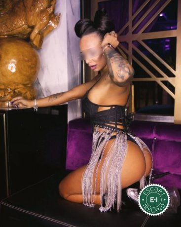 Meet the beautiful Erika Princess in Dublin 6  with just one phone call