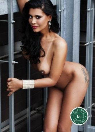 Meet the beautiful TS Sexy Victoria  in Dublin 3  with just one phone call