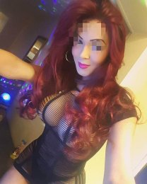 The massage providers in Dublin 9 are superb, and Estrella is near the top of that list. Be a devil and meet them today.