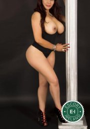 Book a meeting with Luna in Galway City today