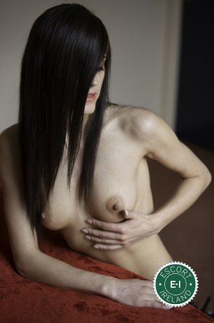Little Dolly is a hot and horny Italian escort from Tipperary Town, Tipperary