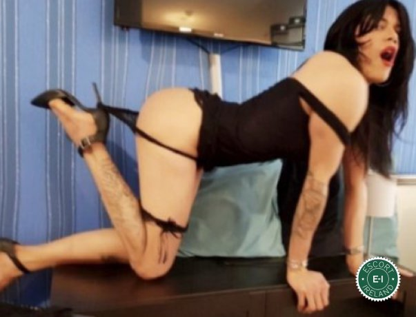TV Stacey is a super sexy Caribbean Escort in Dublin 3