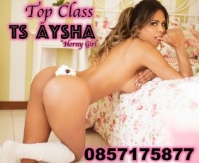 Spend some time with TS Aysha Garbatelli in Santry; you won't regret it